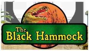 black hammock adventures family fun places in orlando fl  rh   amazingdaytrips